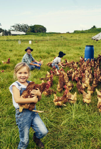 Family Farm Succession: The subtle and critical mix of emotion and money